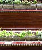 Piccinato: dettaglio casa albergo in via Nicotera